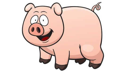 pig cartoon image