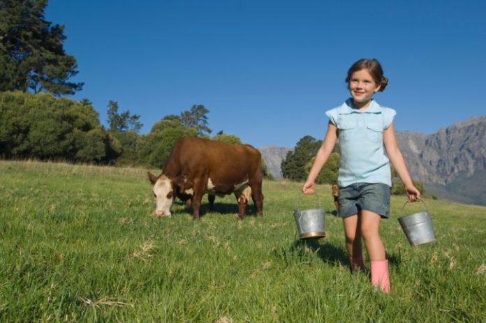 A girl carries two tin pails. There is a cow in the background eating grass.
